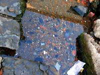 Water fungus and pebbles : An image of a water pit