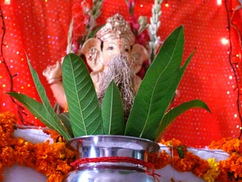 Ganpati and Coconut
